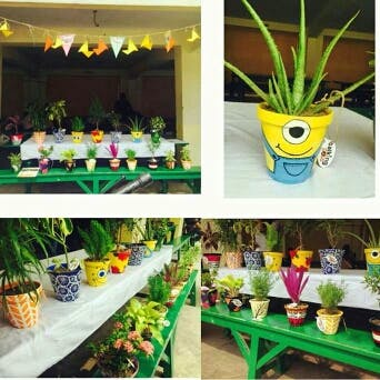 Get Beautiful Hand-Painted Earthen Pots With Exotic Plants At Your Doorstep