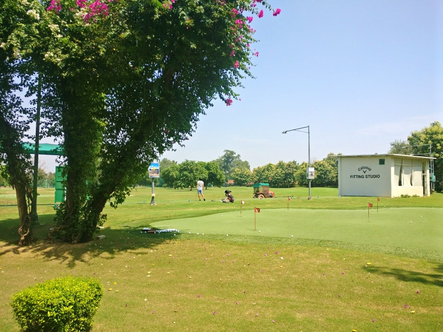 Sport venue,Grass,Lawn,Tree,Land lot,Park,Golf course,Recreation,Competition event,Plant