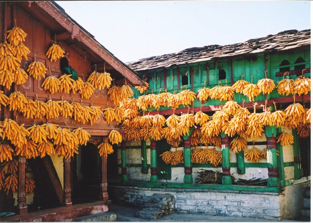 Did You Know There's A Corn Village In Mussoorie?