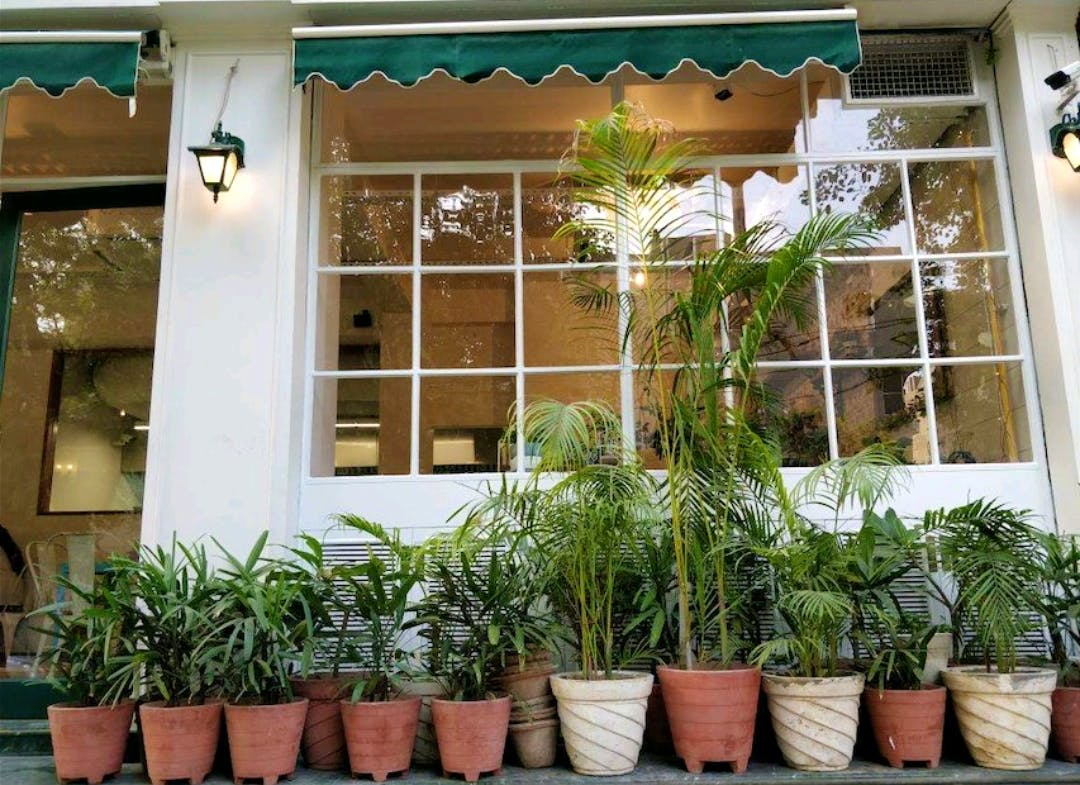 Property,Houseplant,Real estate,Plant,Home,Flowerpot,Window,Building,House,Herb