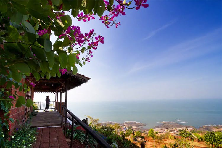 Nature,Sky,Bougainvillea,Property,Tree,Morning,Flower,Spring,Sea,Plant