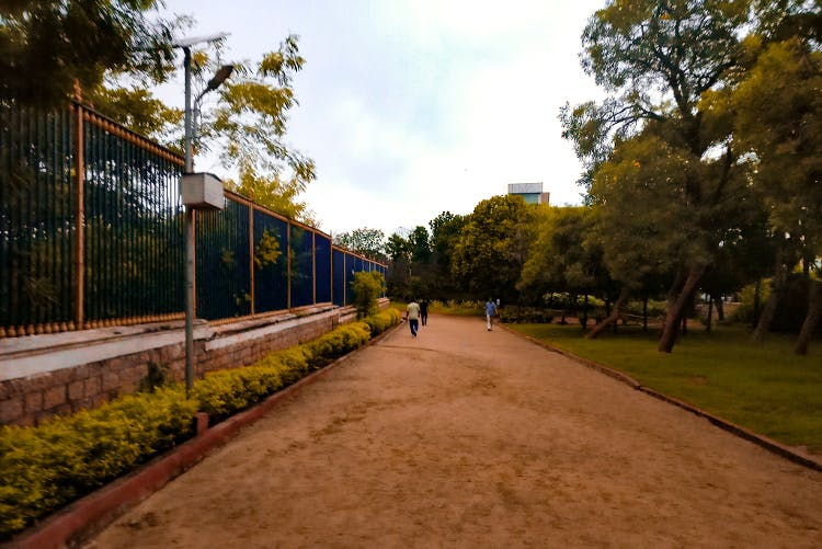 Walkway,Tree,Public space,Leaf,Morning,Road surface,Road,Sky,Thoroughfare,Infrastructure