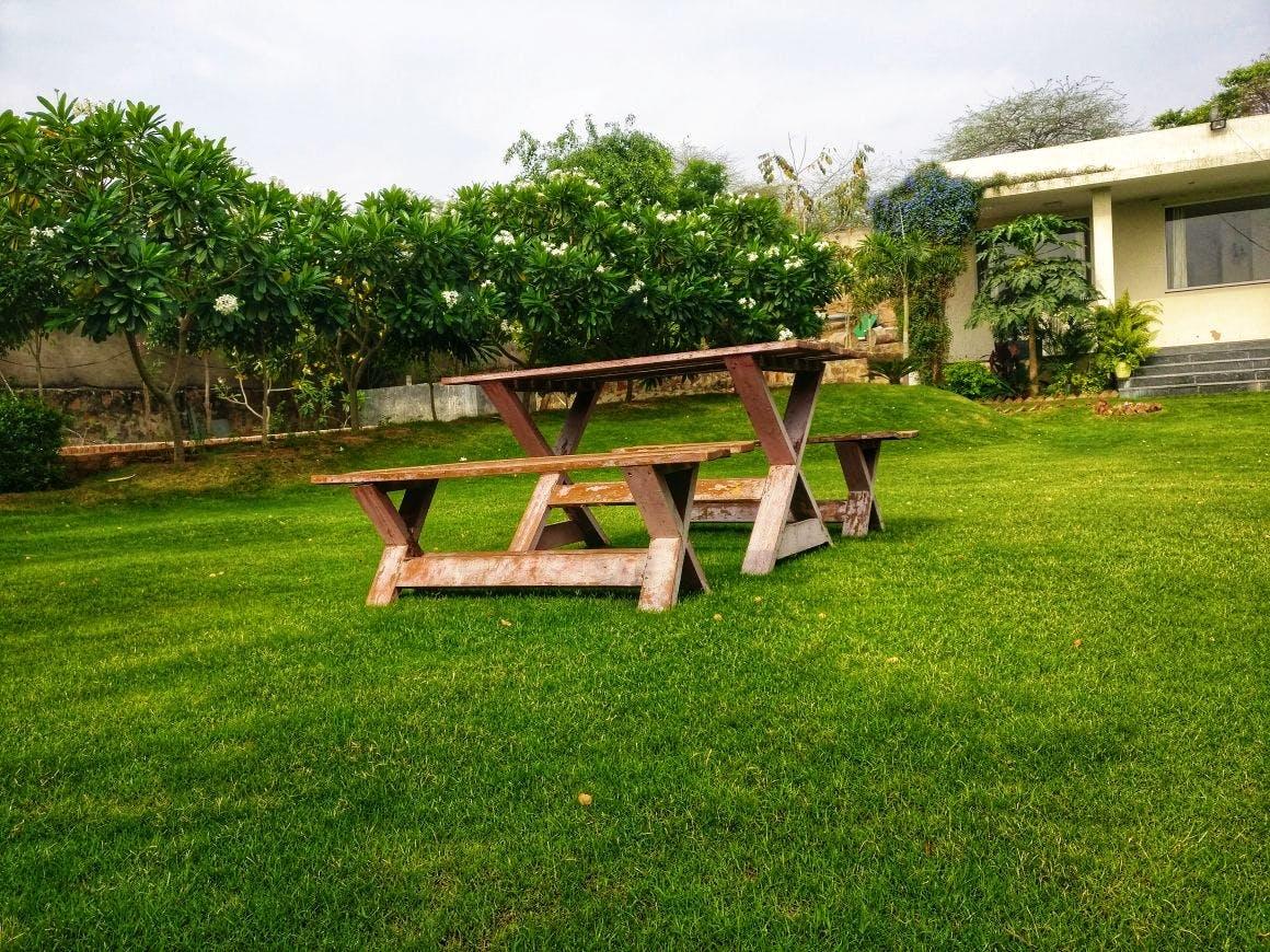Grass,Backyard,Lawn,Property,Yard,Furniture,Table,Bench,Land lot,Outdoor furniture
