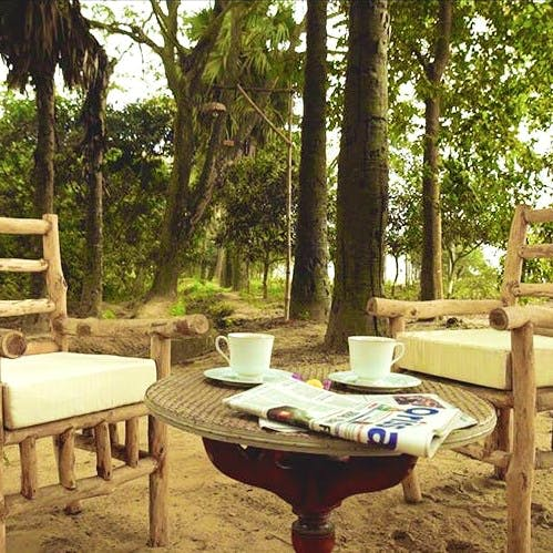 Table,Furniture,Tree,Property,Outdoor table,Room,Coffee table,House,Interior design,Patio