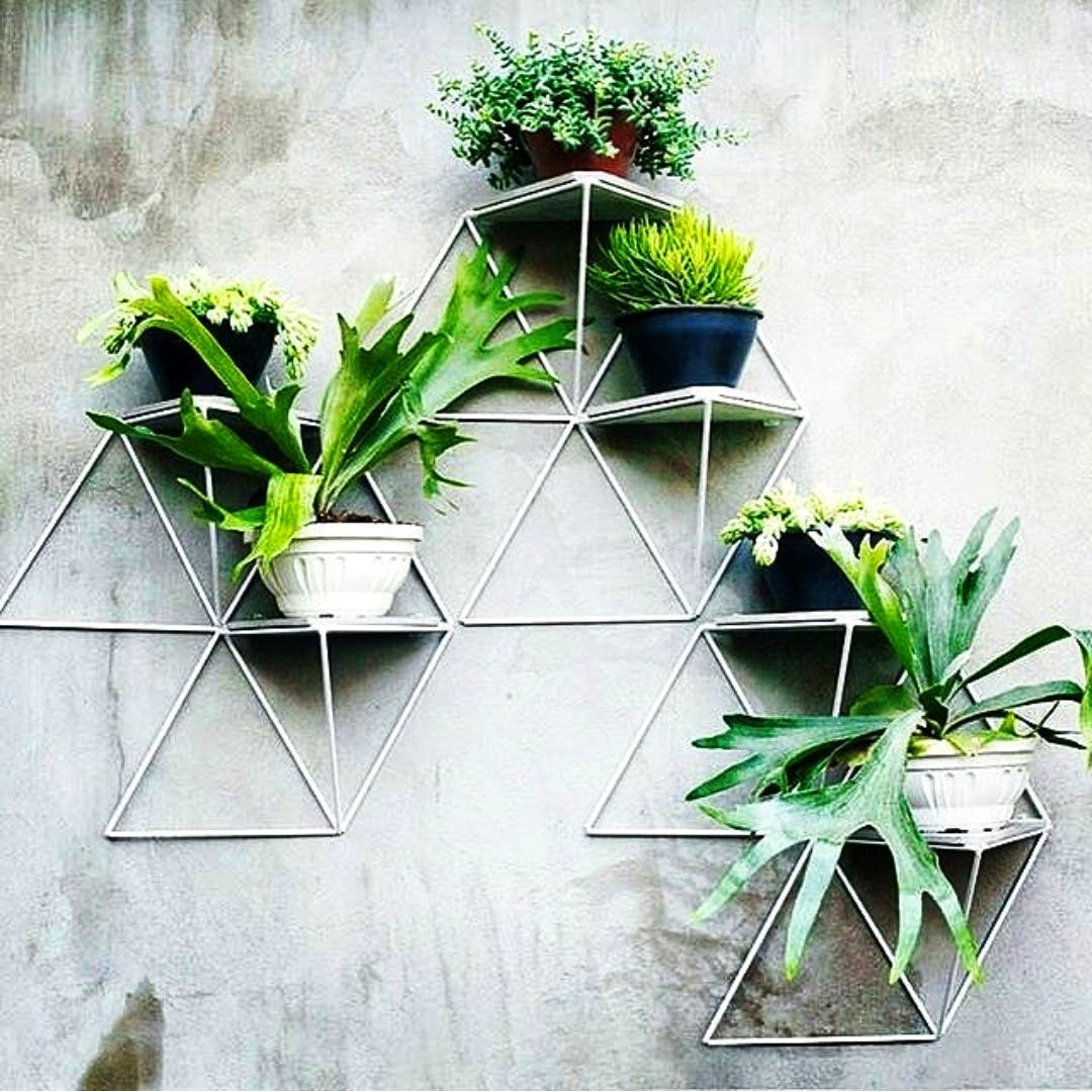image - Greenhouse Design Space