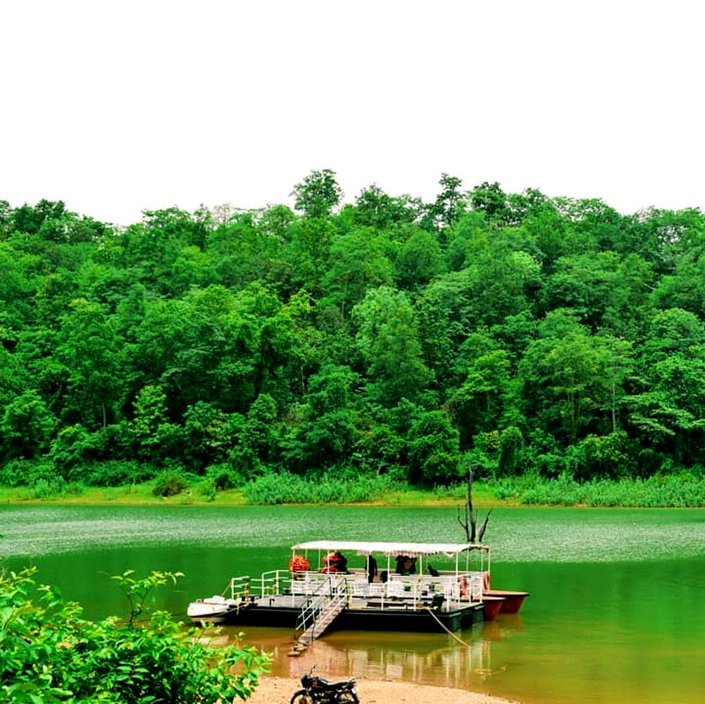 Green,Nature,Natural landscape,Vegetation,Water,Nature reserve,River,Water resources,Water transportation,Natural environment