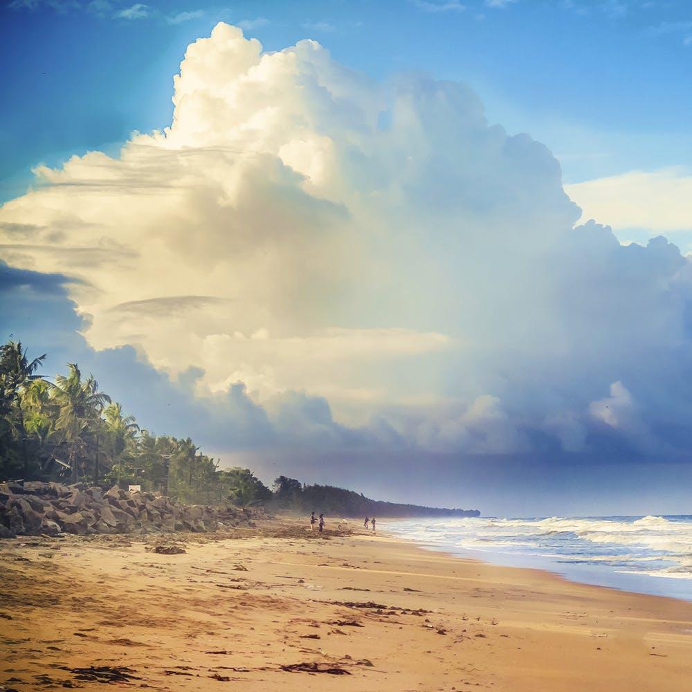 image - Cherai Beach