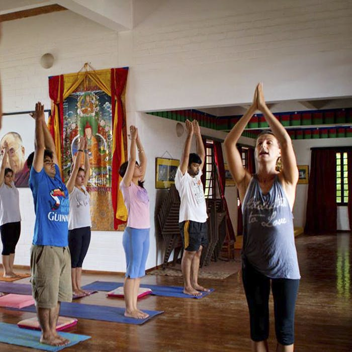 Yoga,Physical fitness,Event,Room,Balance,Performance,Leisure,Child,Contact sport,Art