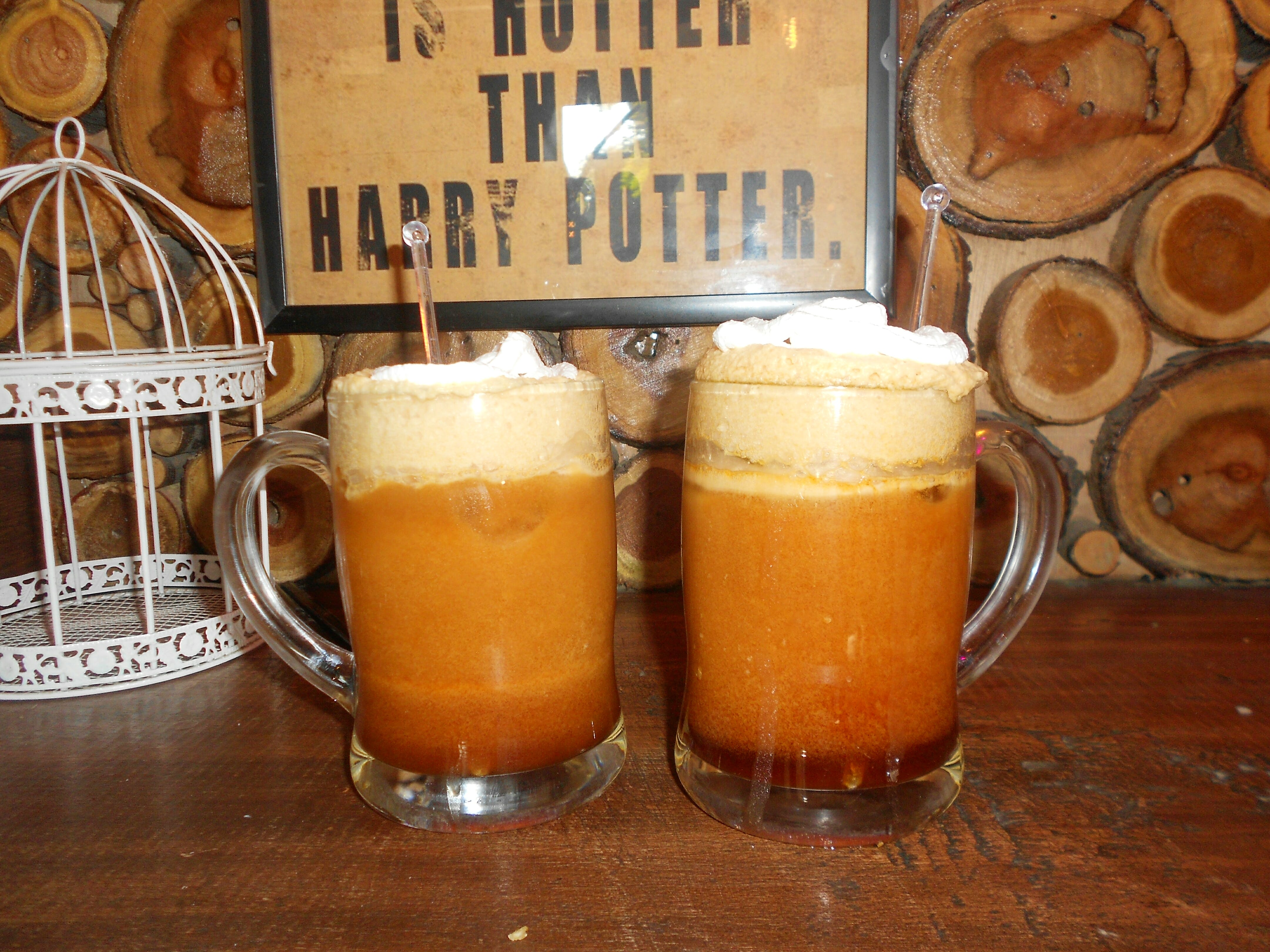 Potterheads! Head Out To This Cafe In Rohini Right Away