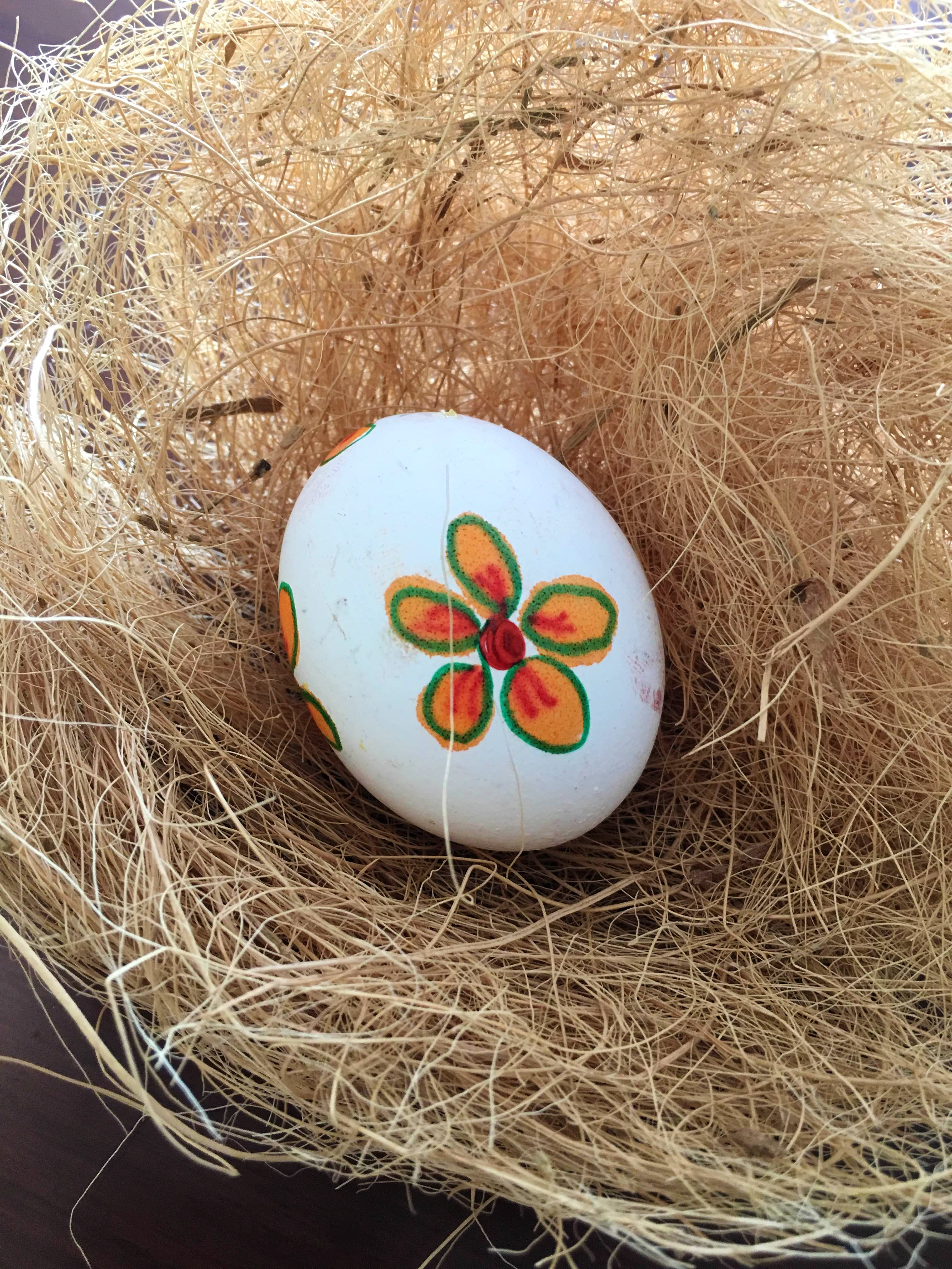 Egg,Easter egg,Bird nest,Nest,Plant,Egg