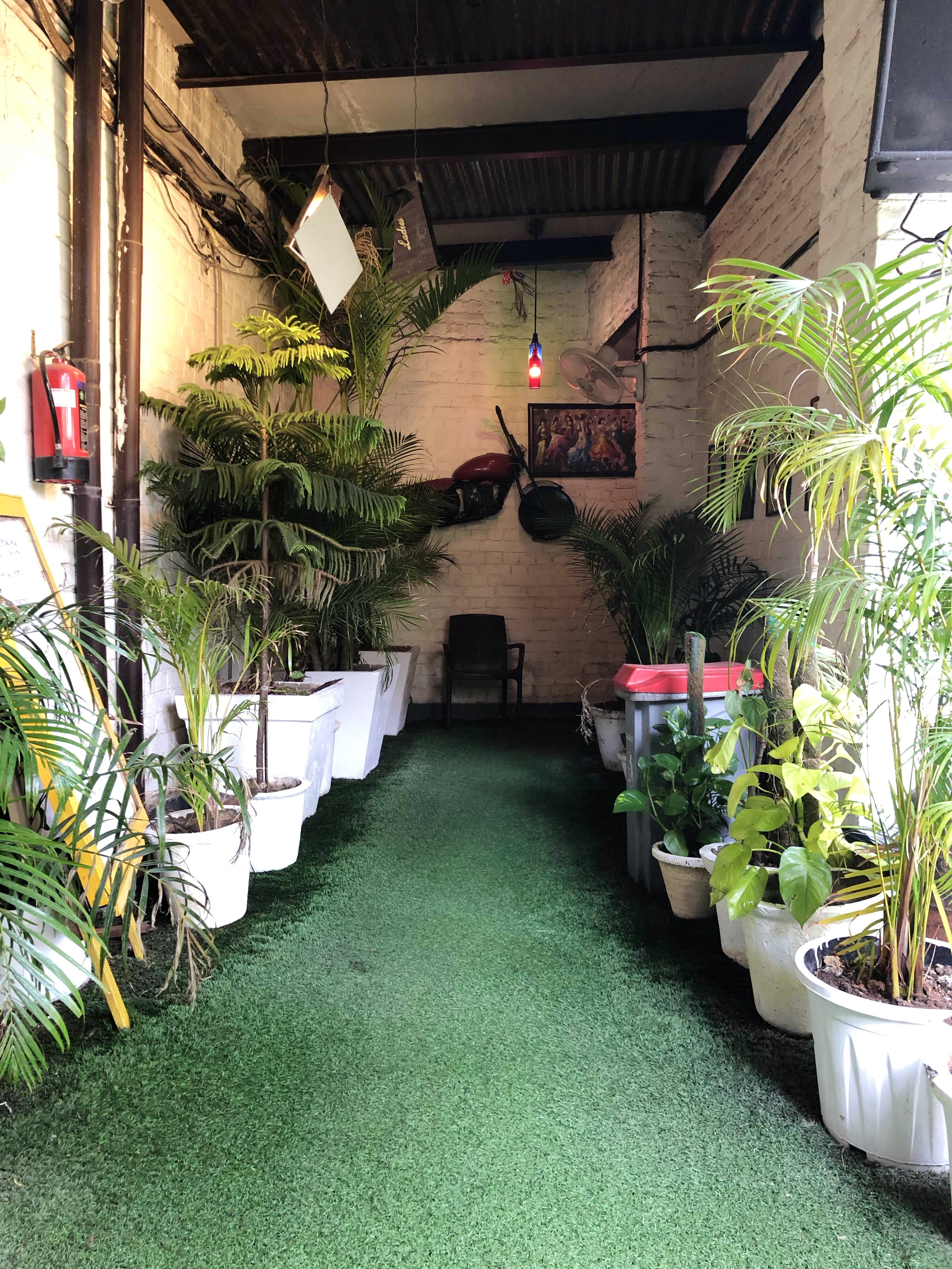 Building,Houseplant,Grass,Tree,Courtyard,House,Plant,Aisle,Garden,Flooring