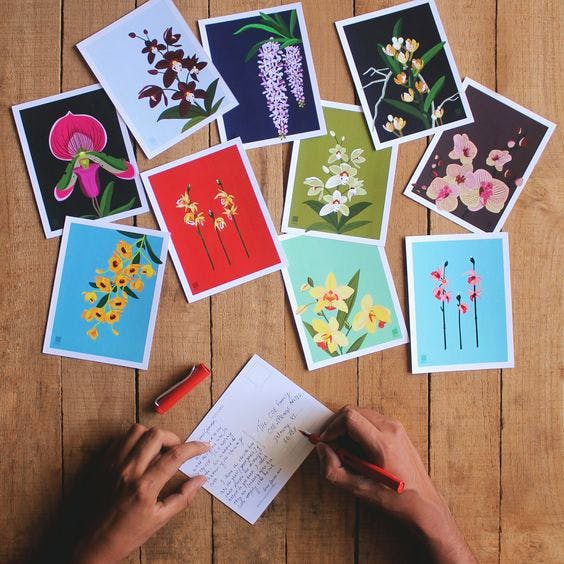 Leaf,Paper,Stationery,Hand,Greeting card,Plant,Paper product,Wildflower,Games