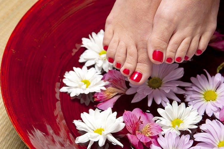 Petal,Nail,Flower,Hand,Manicure,Pink,Plant,Finger,Leg,Daisy