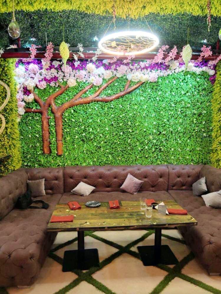 Furniture,Garden,Wall,Botany,Table,Plant,Landscaping,Grass,Interior design,Couch