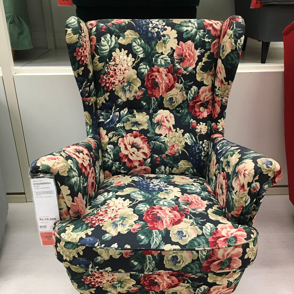 Chair,Furniture,Slipcover,Interior design,Plant,Interior design,Flower