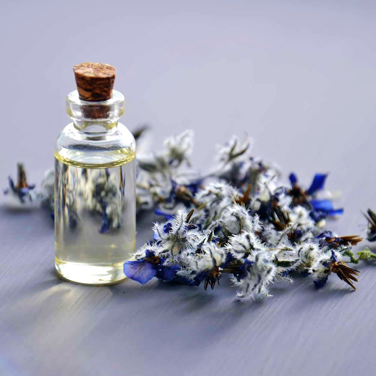 Blue,Product,Lavender,Flower,Plant,Glass,Bottle,Still life photography,English lavender