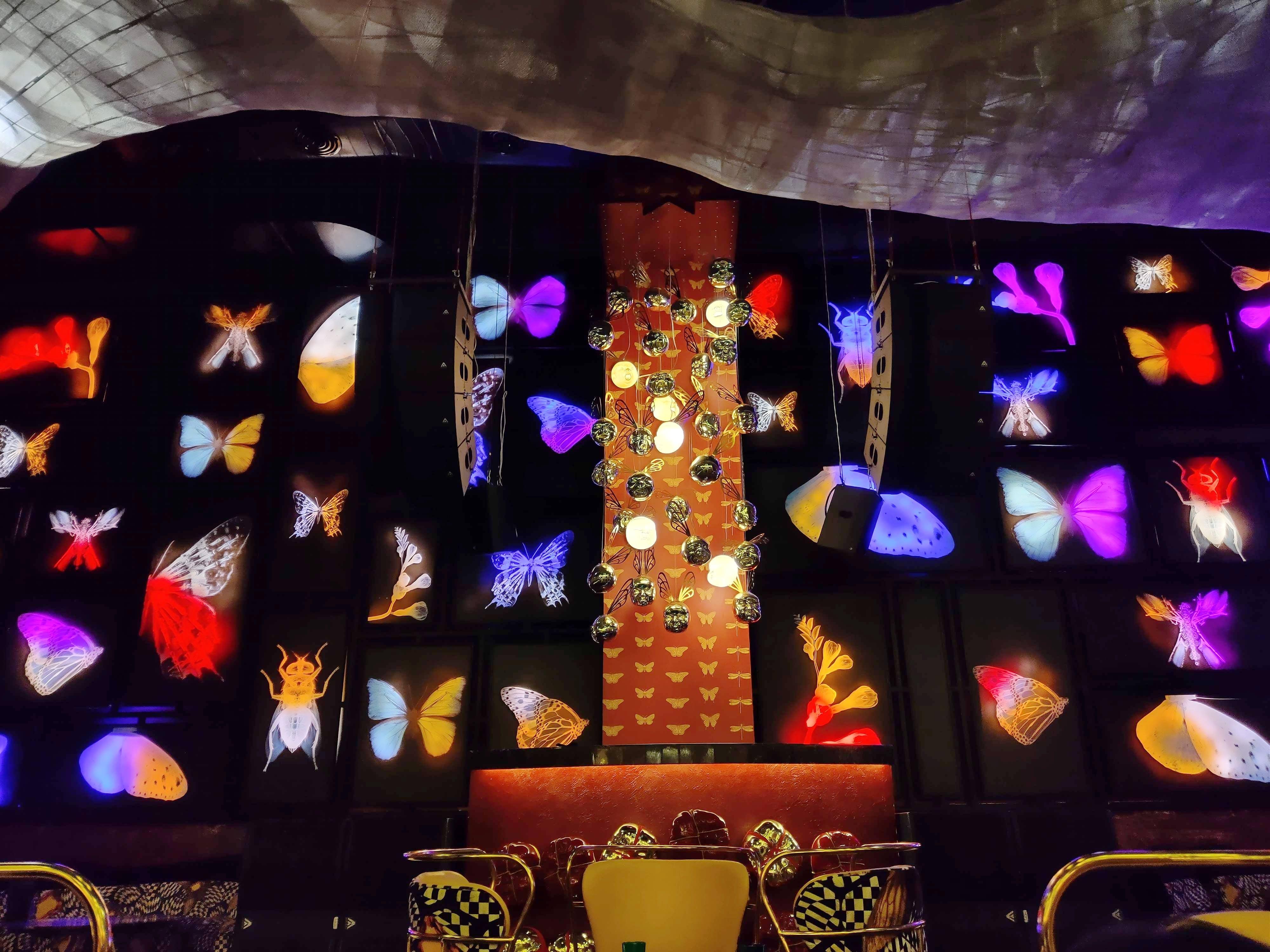 Bug Themed Décor & Culinary Hotspot At Dragonfly In Aerocity