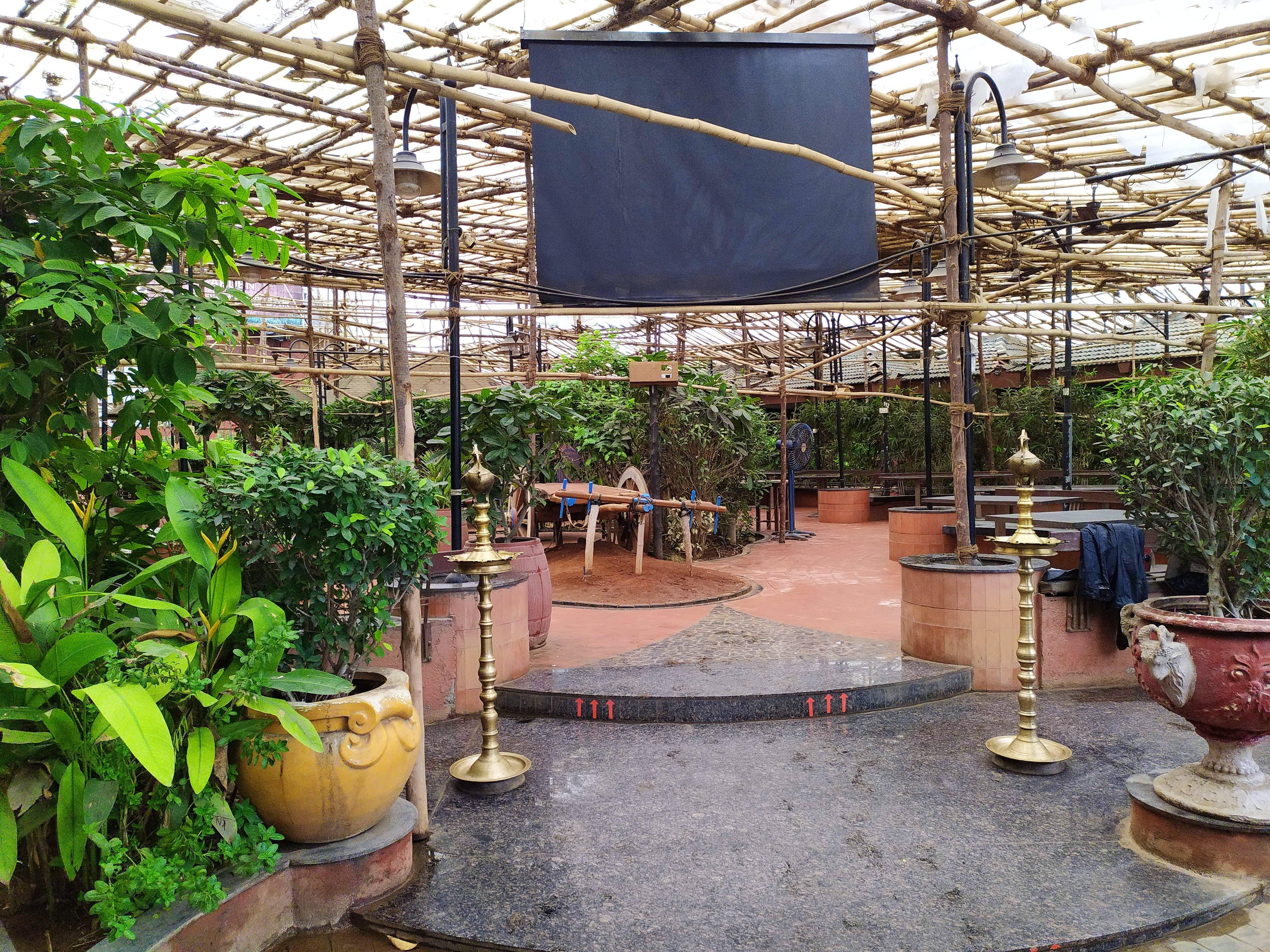 Greenhouse,Botany,Building,Garden,Plant,Backyard,Houseplant,Shade