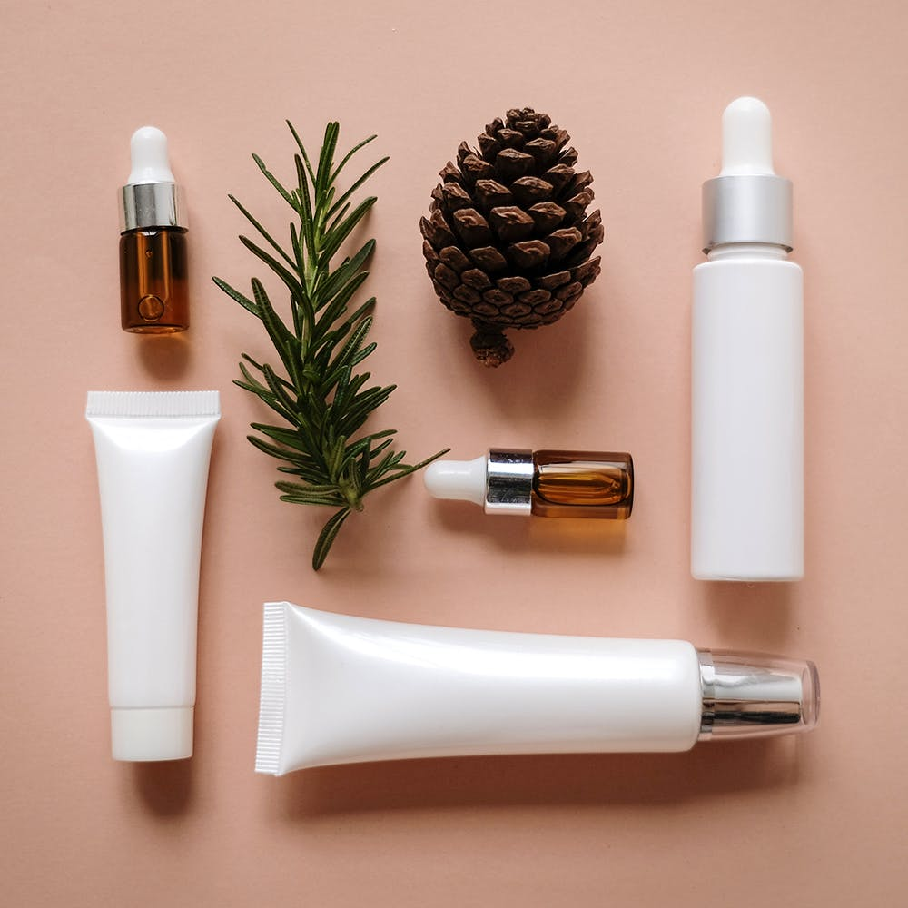 Product,Tree,Plant,Pine,Cosmetics,Pine family,Bottle,Conifer,Fir