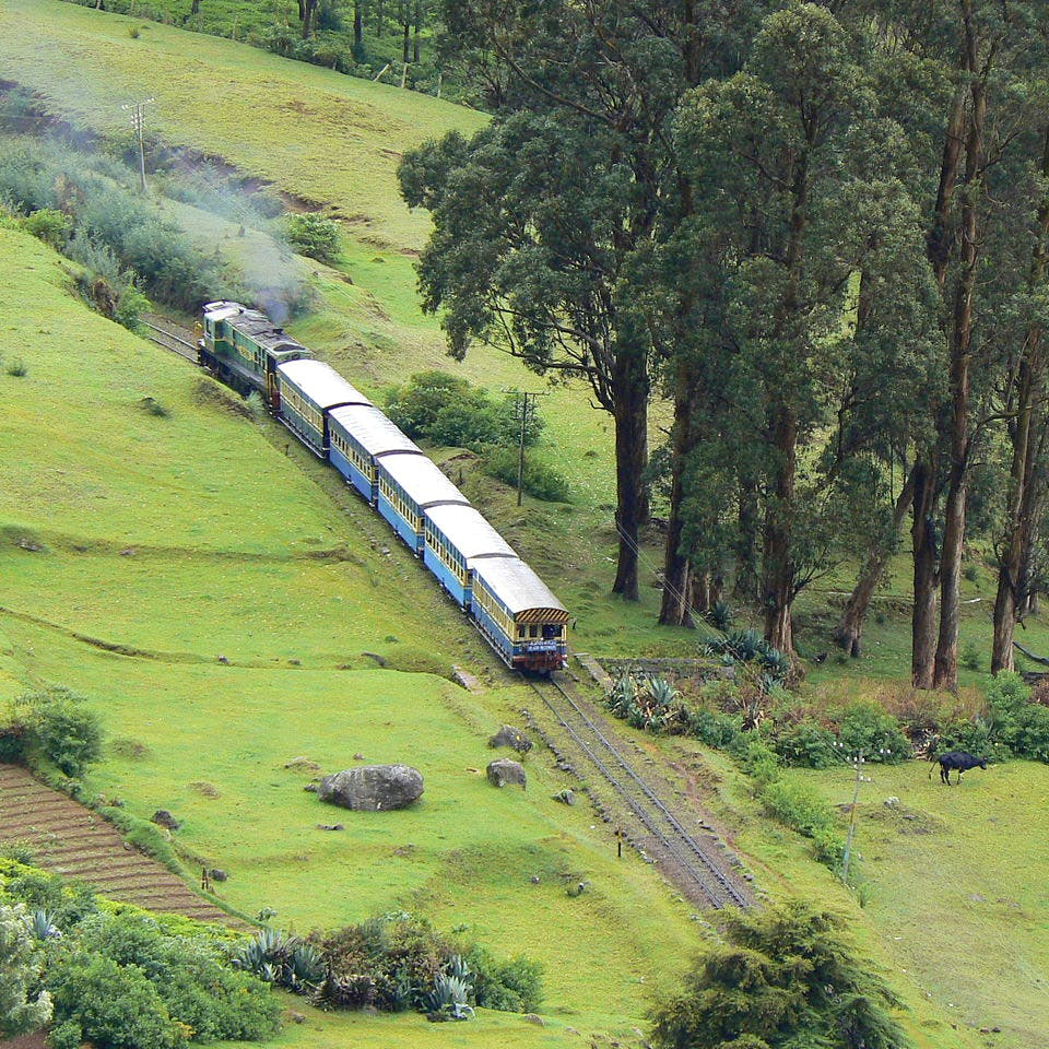 Transport,Train,Railway,Green,Rolling stock,Vehicle,Locomotive,Mode of transport,Hill station,Rural area