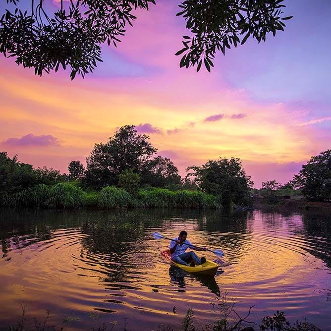 Sky,Nature,Reflection,River,Sunset,Purple,Tree,Dusk,Cloud,Evening