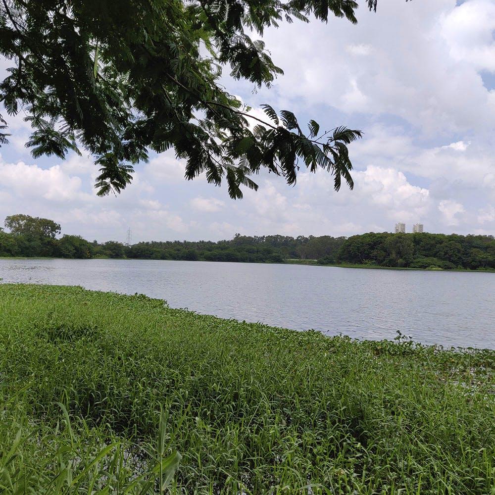 image - Hebbal Lake