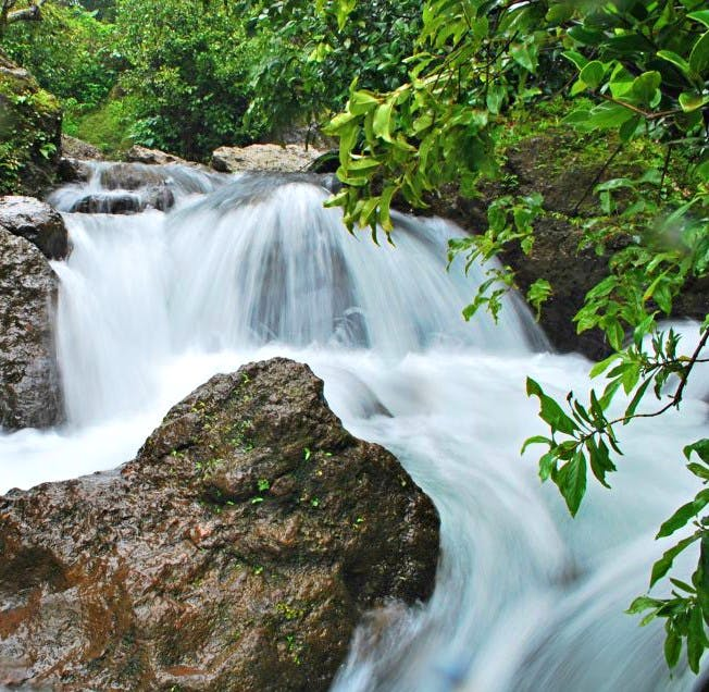 Waterfall,Water resources,Body of water,Natural landscape,Watercourse,Water,Nature,Vegetation,Nature reserve,Stream