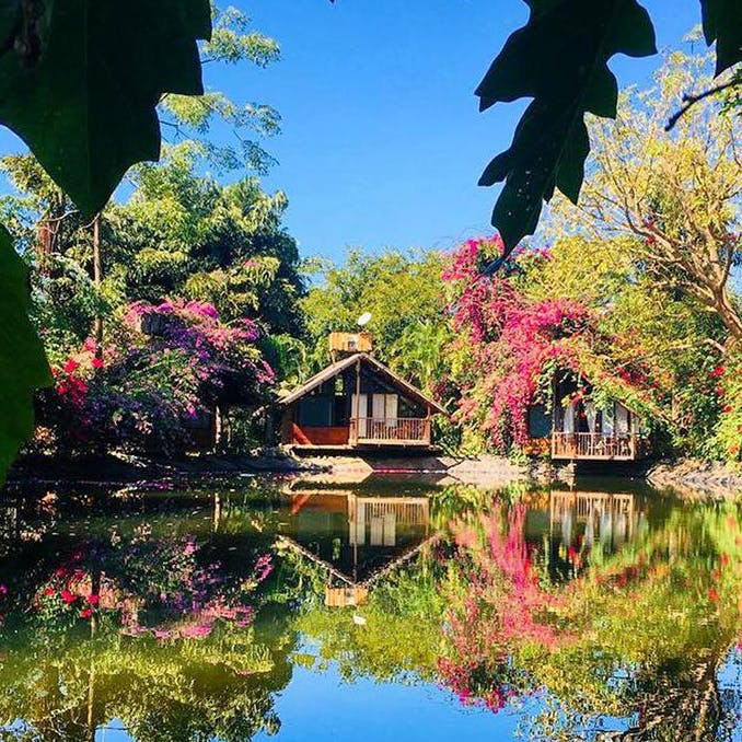 Reflection,Nature,Sky,Tree,Leaf,Natural landscape,Water,Pond,House,Wilderness