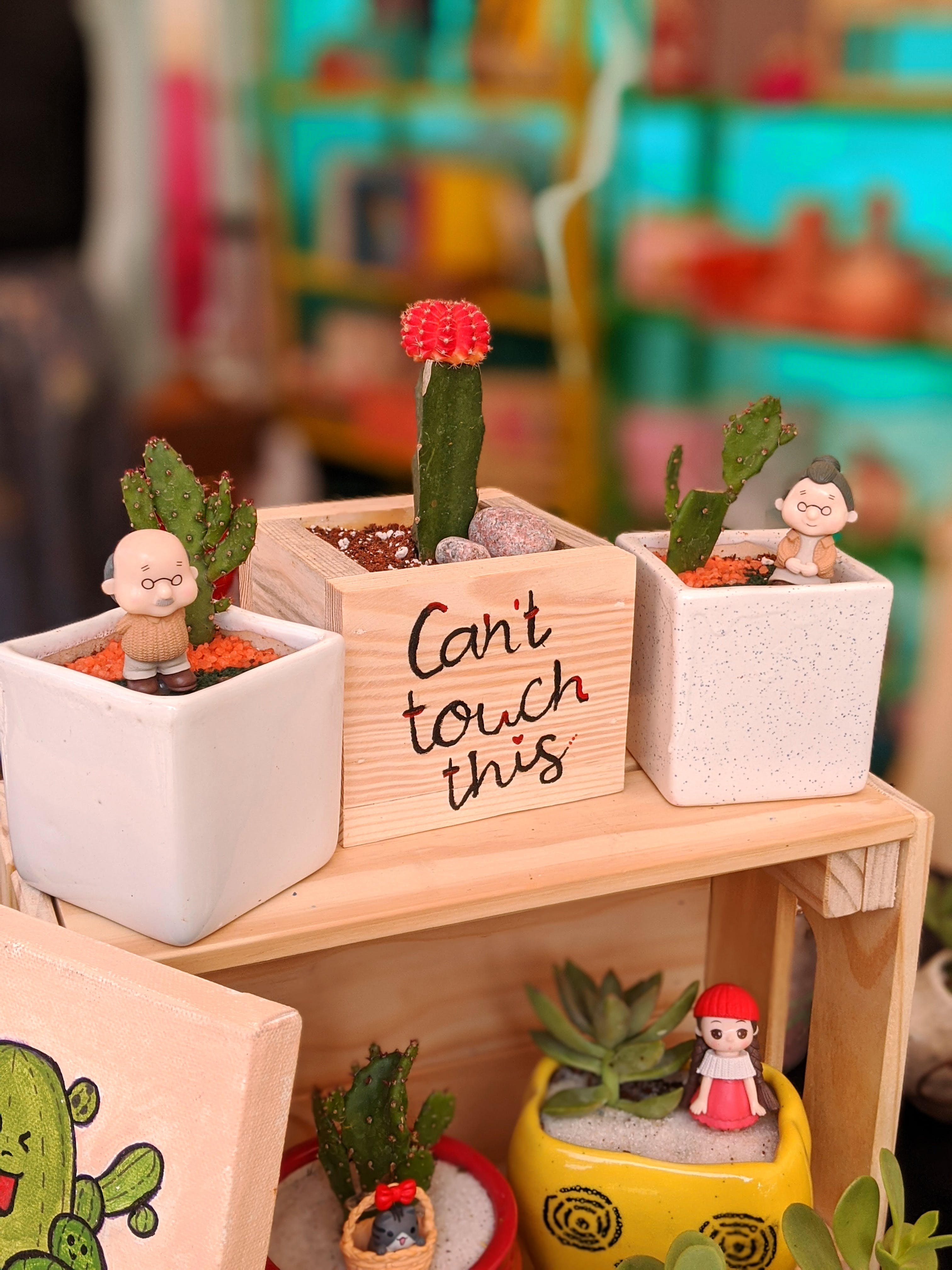 Adorable Miniature Gardens To Quirky Gifts: This Local Brand Is Lit AF