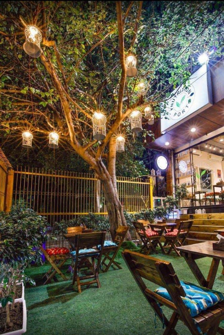 Tree,Restaurant,Building,Plant,Room,Backyard,Table,Furniture,Home,Patio