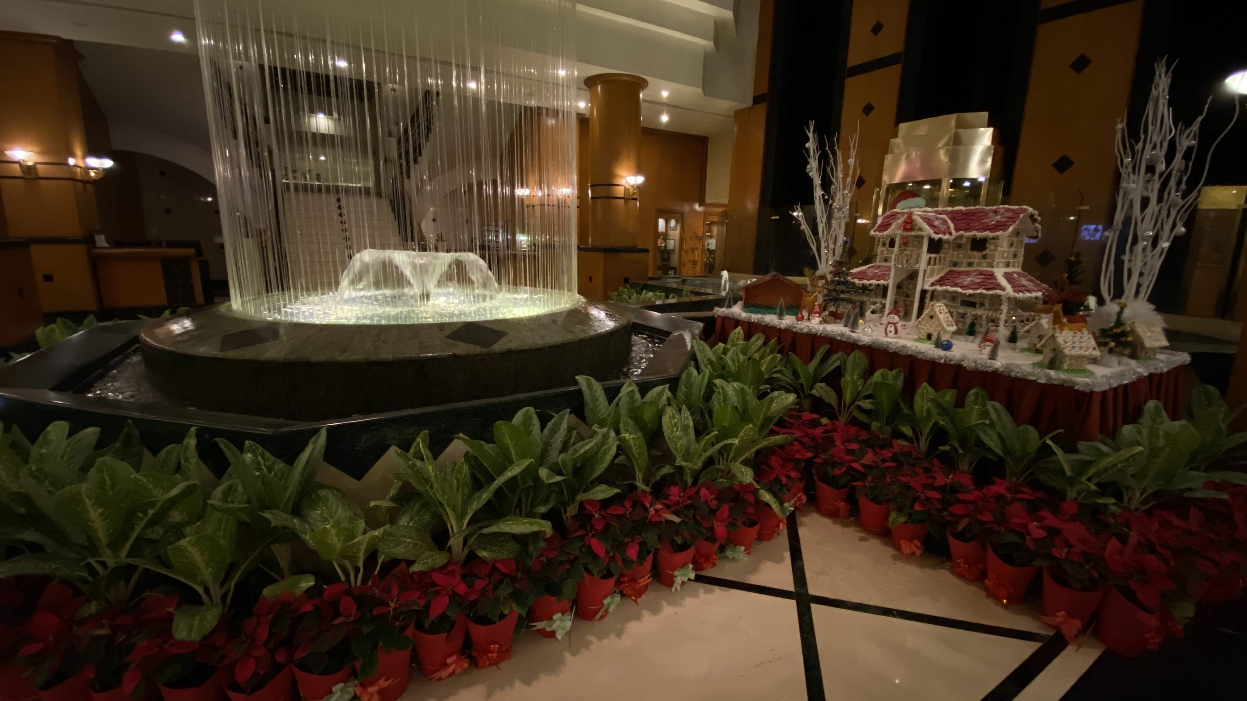 Buffet,Function hall,Meal,Plant,Interior design