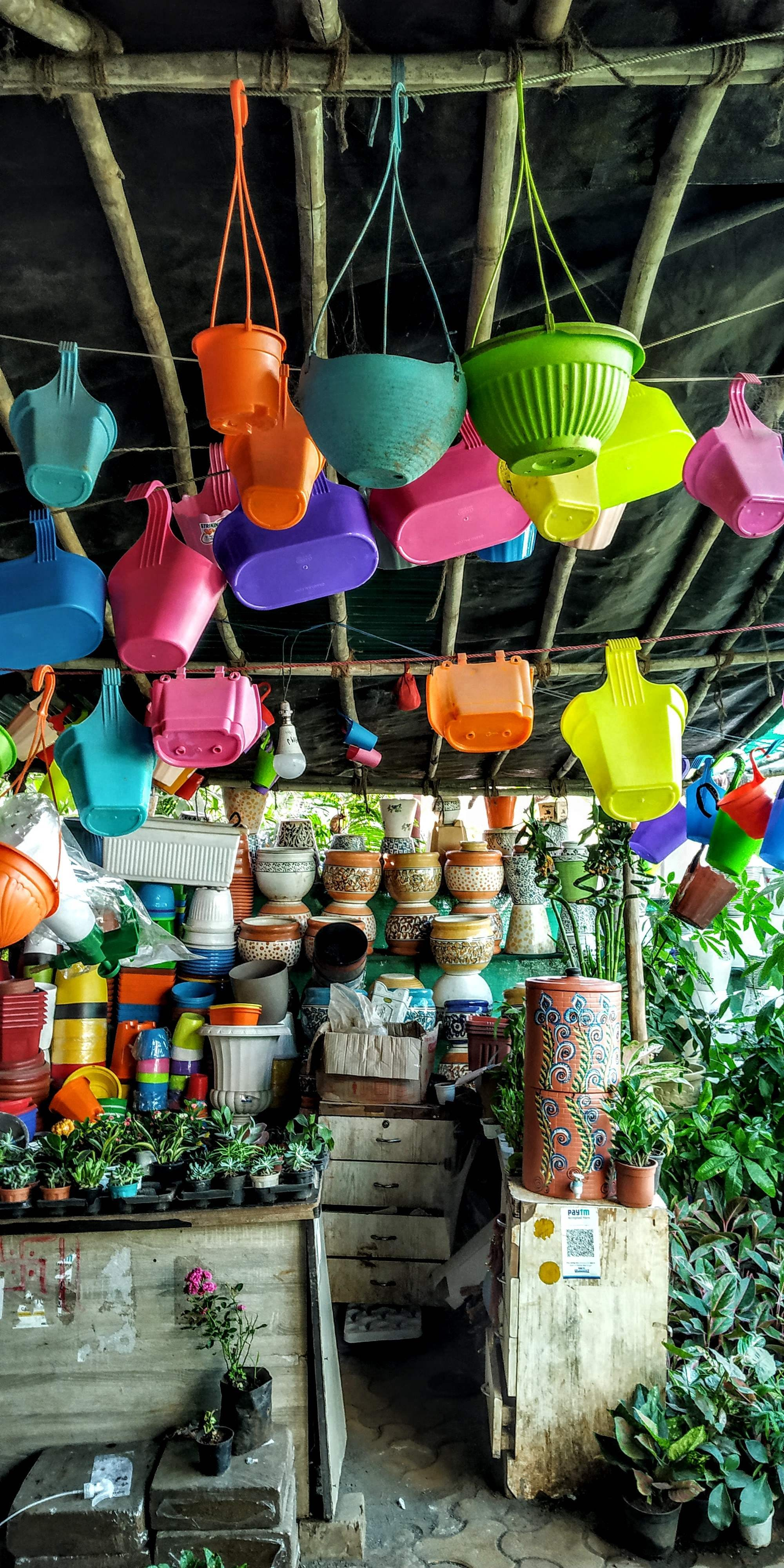 Mukesh Nursery: A Complete Plant Seller & Garden Contractor For Your Home Decor