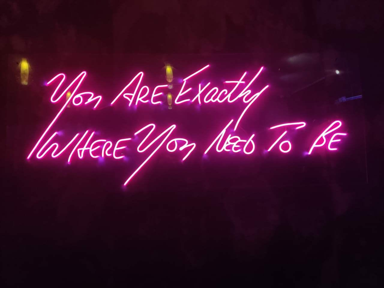 Text,Neon sign,Neon,Pink,Light,Font,Electronic signage,Visual effect lighting,Lighting,Magenta