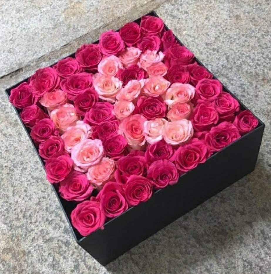 Rose,Pink,Garden roses,Flower,Petal,Red,Rose family,Plant,Bouquet,Cut flowers