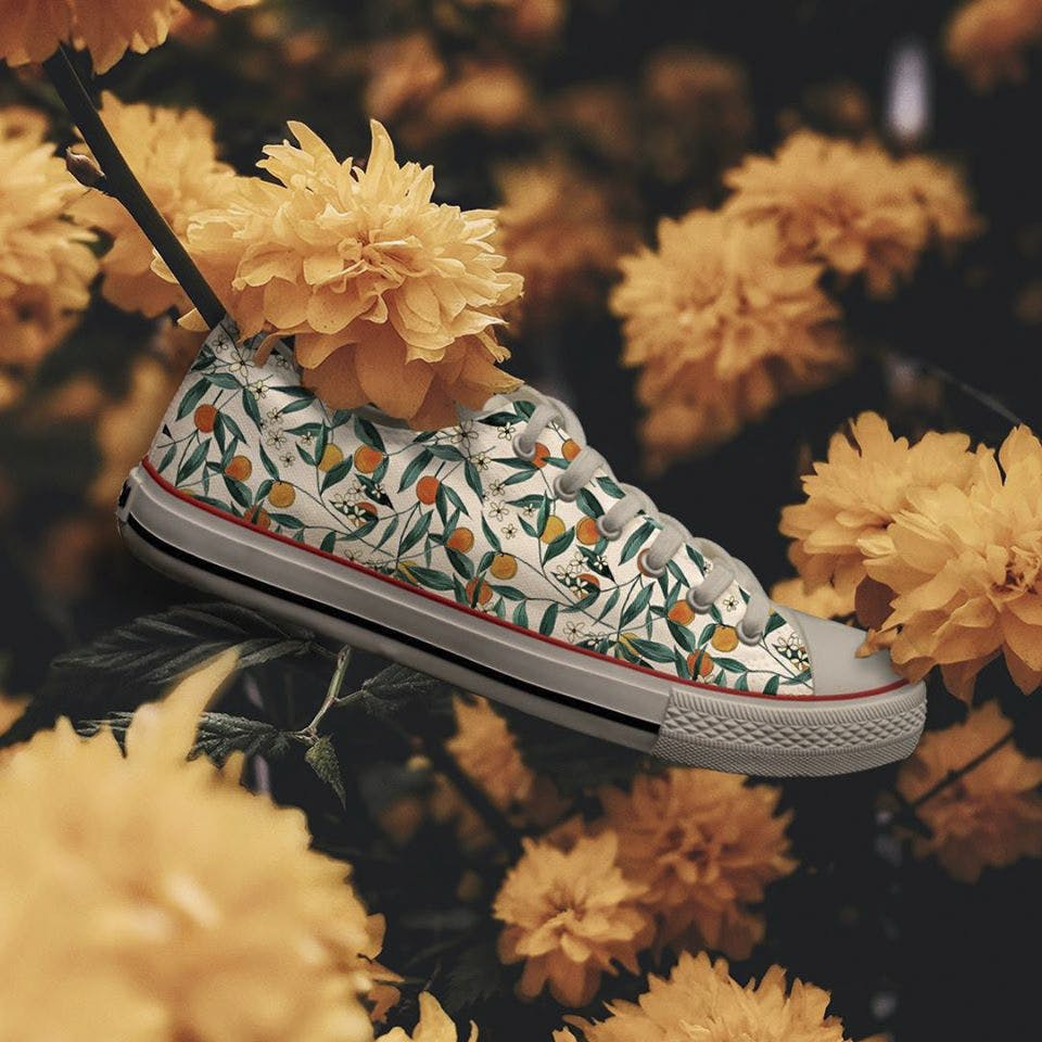 Footwear,Shoe,Leaf,Product,Font,Chrysanths,Flower,Plant,Still life photography,Artificial flower