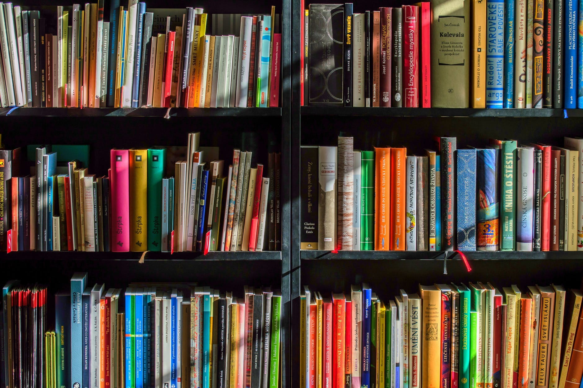 Shelving,Bookcase,Shelf,Book,Publication,Library,Bookselling,Furniture,Cyclone,Collection