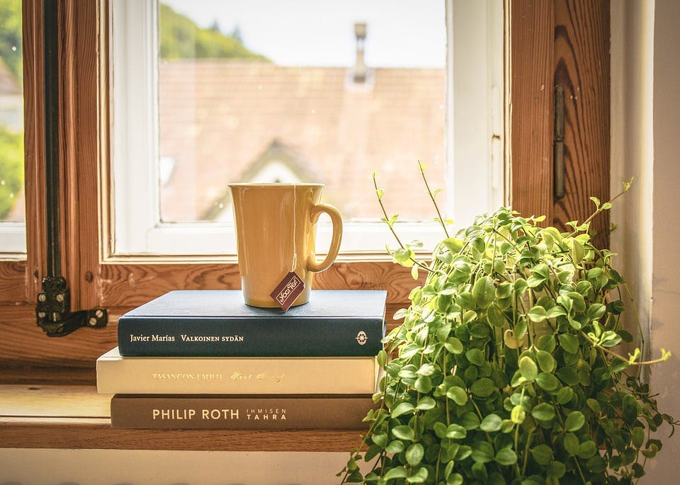 Room,Interior design,Window,Furniture,Home,Table,Plant,Wood,Houseplant,House