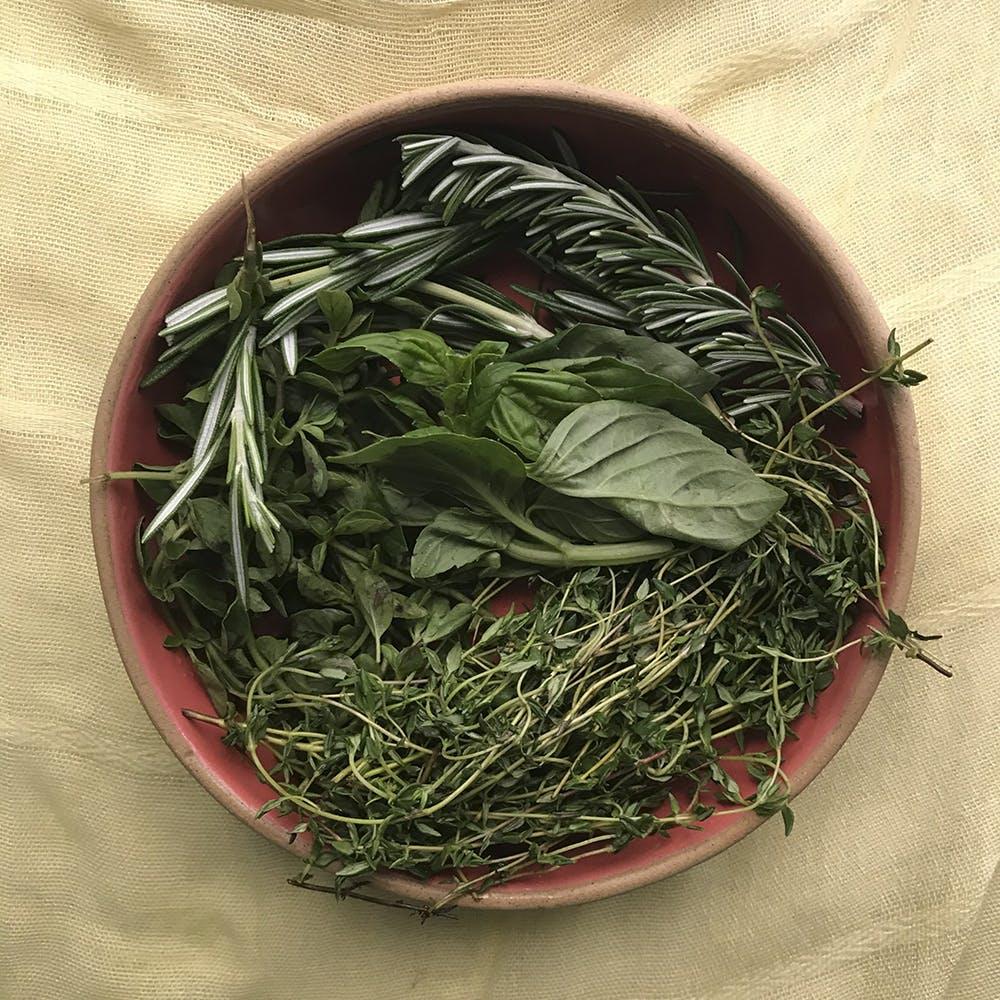 Gyokuro,Plant,Sencha,Herb,Vegetarian food,Shincha,Junshan yinzhen,Huangshan maofeng,Bai mudan,Kabusecha