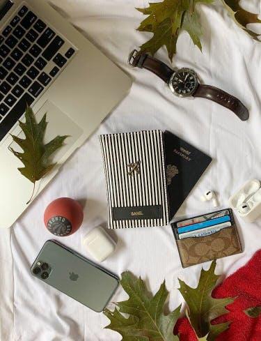 Accordion,Plant,Fashion accessory,Hair accessory,Garmon,Shirt