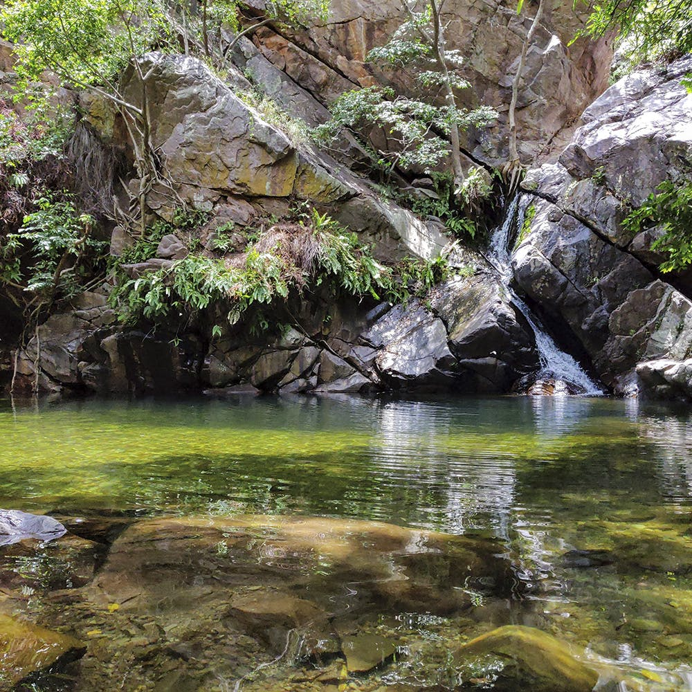 Body of water,Nature,Water resources,Water,Stream,Natural landscape,Watercourse,Vegetation,Nature reserve,Riparian zone