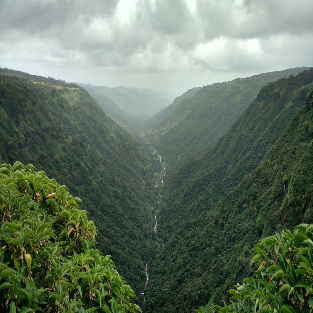 Highland,Mountainous landforms,Mountain,Hill station,Vegetation,Nature,Natural landscape,Jungle,Nature reserve,Valley