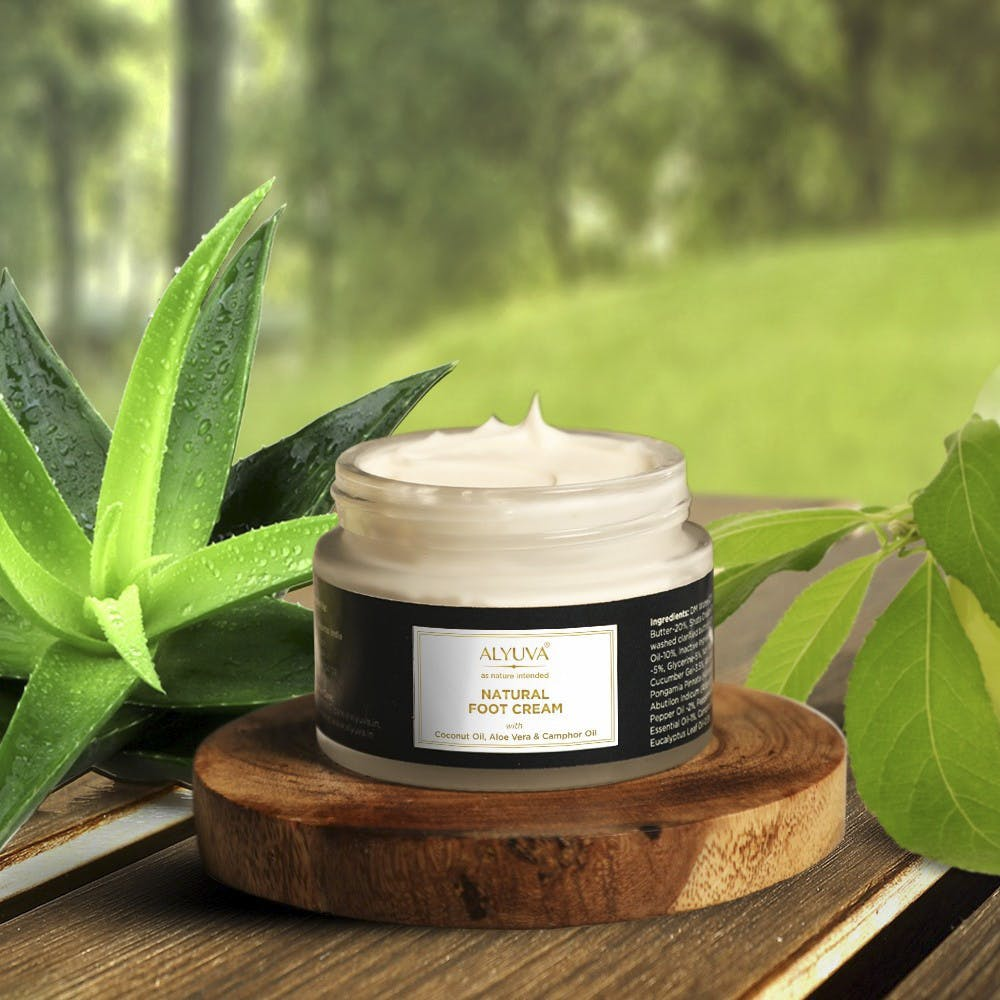 Product,Skin care,Leaf,Cream,Plant,Cream,Herbal,Herb,Flower