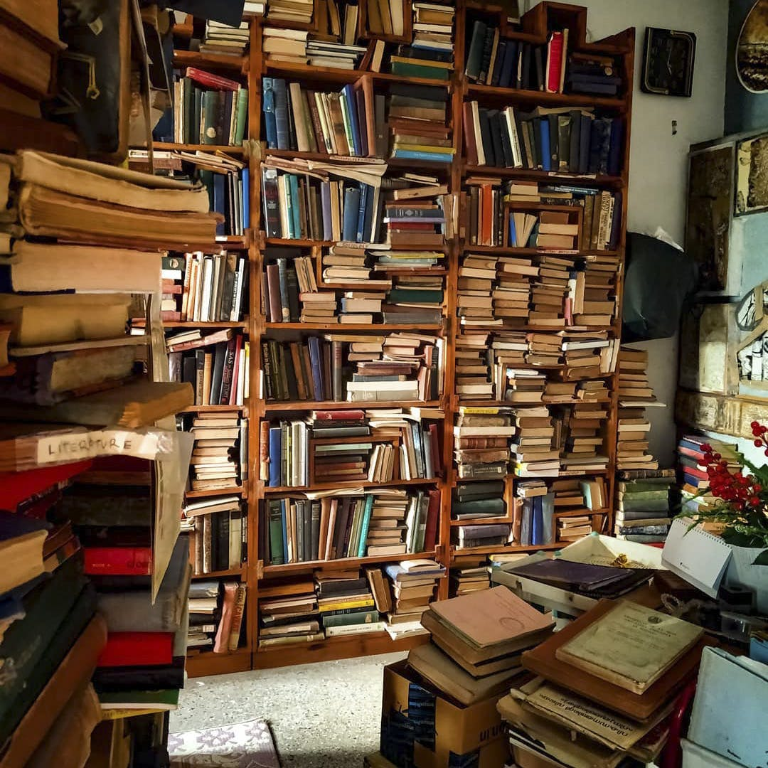 Book,Bookselling,Bookcase,Shelving,Publication,Furniture,Shelf,Library,Wood,Building