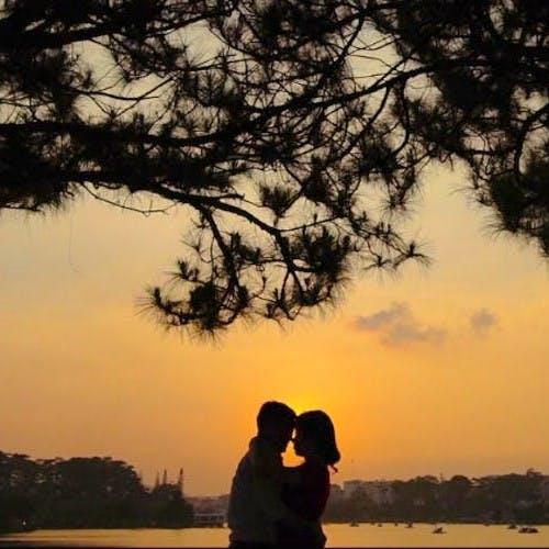 People in nature,Sky,Photograph,Love,Romance,Tree,Yellow,Sunset,Snapshot,Cloud
