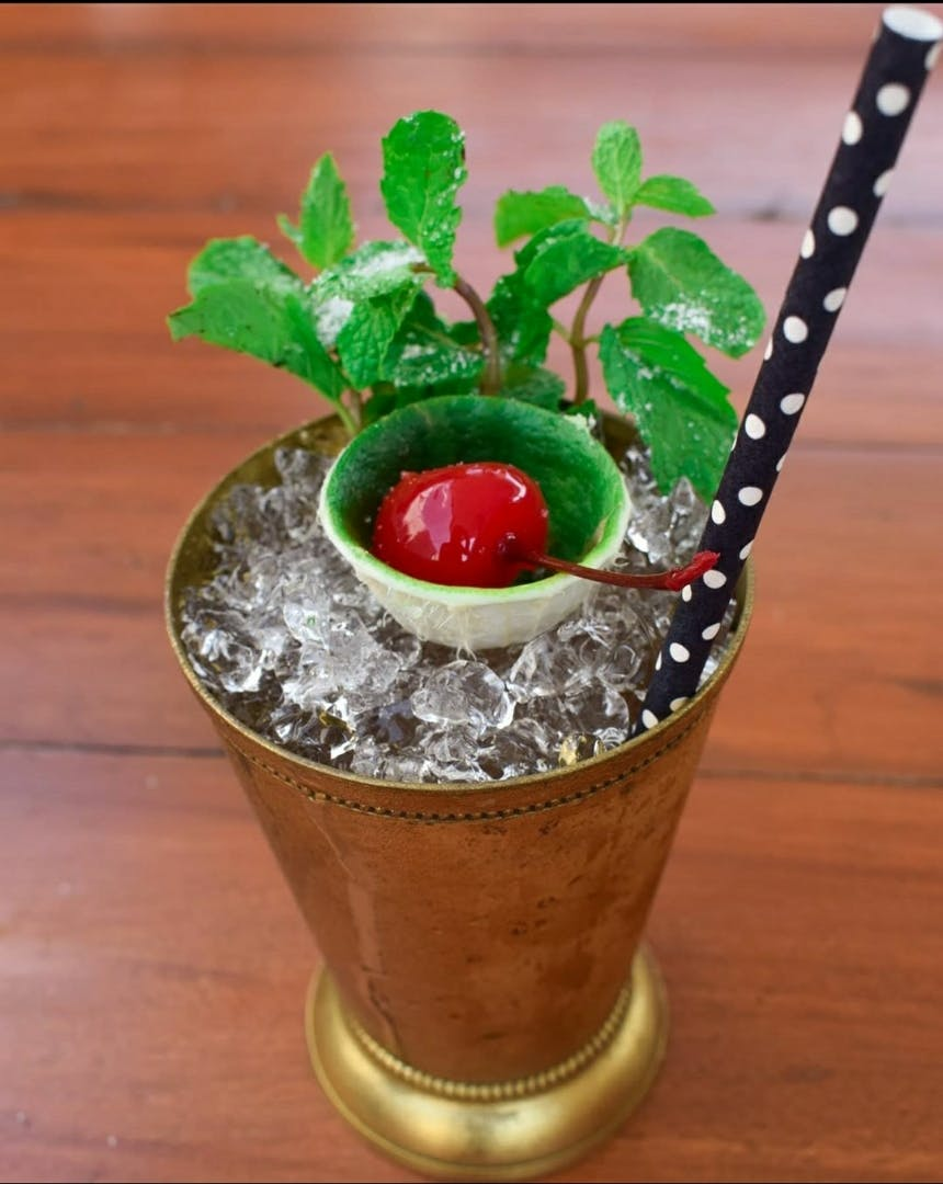 Cocktail garnish,Drink,Flowerpot,Mint julep,Non-alcoholic beverage,Plant,Food,Mai tai,Flower,Houseplant