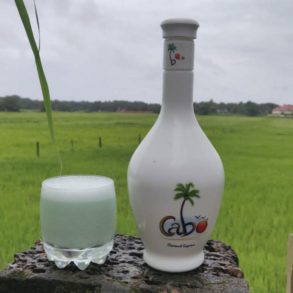 Liquid,Grass,Fluid,Bottle,Drinkware,Glass,Plain,Land lot,Field,Grassland