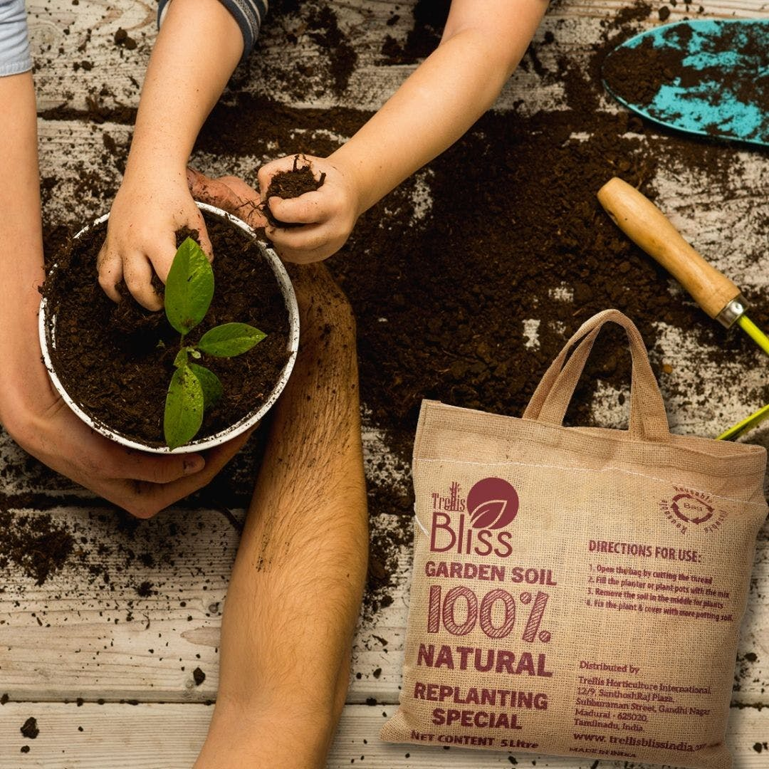 Photograph,Leg,Flowerpot,Plant,Thigh,Finger,People in nature,Nail,Font,Thumb