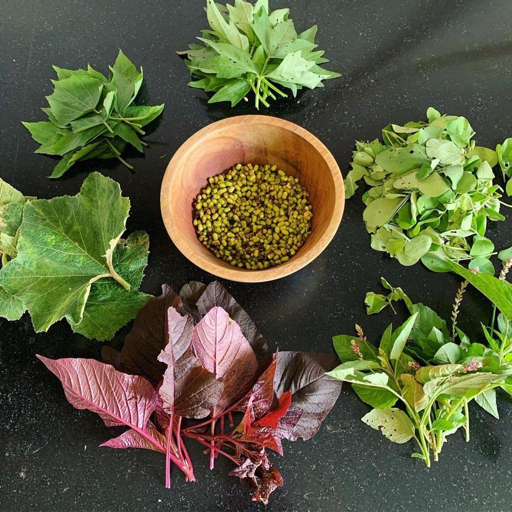 Plant,Green,Ingredient,Leaf vegetable,Natural foods,Terrestrial plant,Flowering plant,Food,Produce,Grass