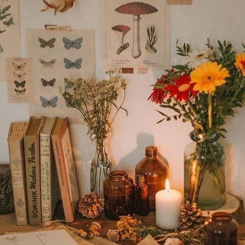 Flower,Plant,Candle,Orange,Decoration,Textile,Branch,Picture frame,Lighting,Vase