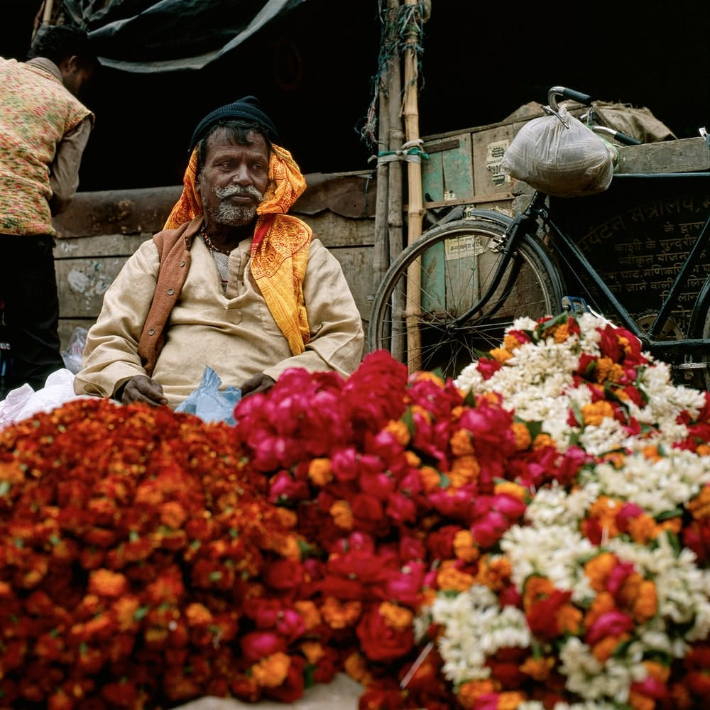 Flower,Plant,Selling,Natural foods,Market,Petal,Public space,City,Hawker,Whole food